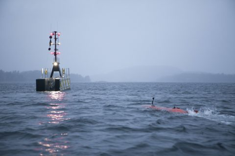 GEBCO-NF Demonstrate AUV-USV Solution for Ocean Surveys