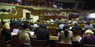 Earth Negotiations Bulletin (ENB) | DSM Observer