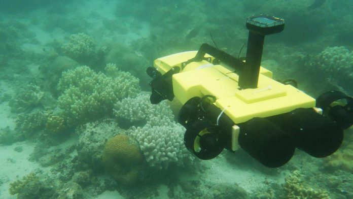 If commercial mining of seabeds is to prove viable, specialist machinery such as robot submarines will need to be developed. AFP