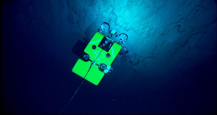 The remotely-operated Hercules searches for deep sea fauna. (Image: NOAA)