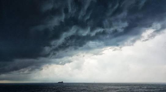 Majority of ocean revenue is dominated by just 100 companies
