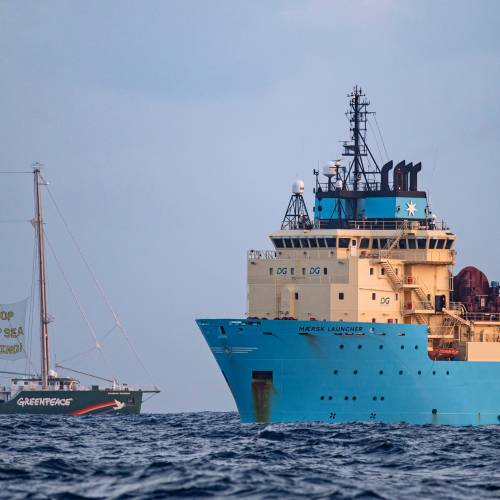 Major Brands Say No to Deep-sea Mining, for the Moment